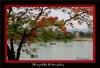11Hue_PhuongVi.jpg